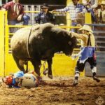 Kris Furr- Bullfighter